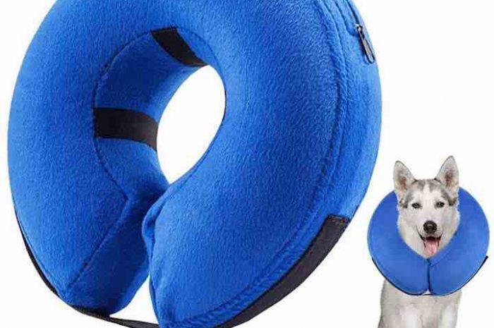 Frifer aufblasbares Hundehalsband: Schutzkragen bei Wunden