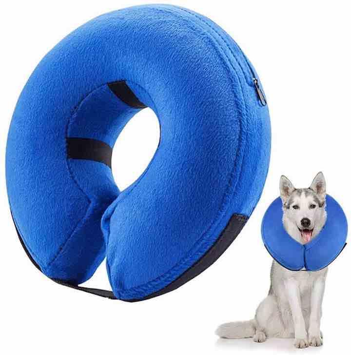aufblasbares-hundehalsband-trichter-alternative