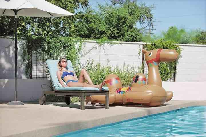 aufblasbares-kamel-an-land