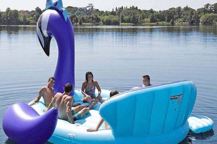 Aufblasbarer Riesen Pfau: Schwimmender Hingucker sorgt für Spaß